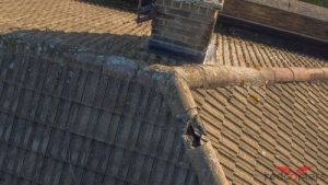 Image shows pan tiled roof with broken hip tile